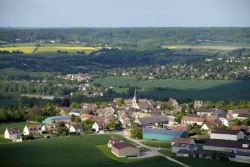 Un rapport dénonce la perte de biodiversité de la région Île-de-France