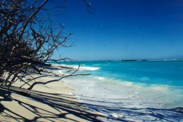 La protection de la biodiversité des îles Eparses est une priorité pour la France