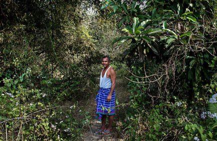 Jadav Payeng : l'homme qui a planté une forêt entière à lui seul