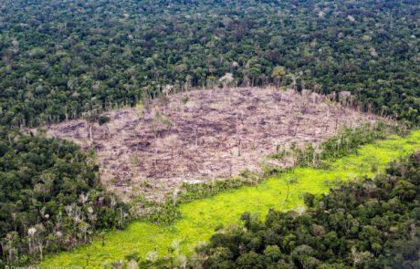 Le Brésil doit prouver à son principal donateur que la protection de l'Amazonie fonctionne