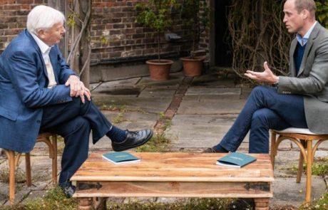 Le prince William recrute des célébrités pour lancer le prix mondial de l'environnement