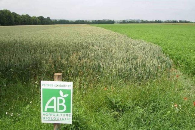 L'agriculture biologique pourrait nourrir toute l'Europe d'ici 2050