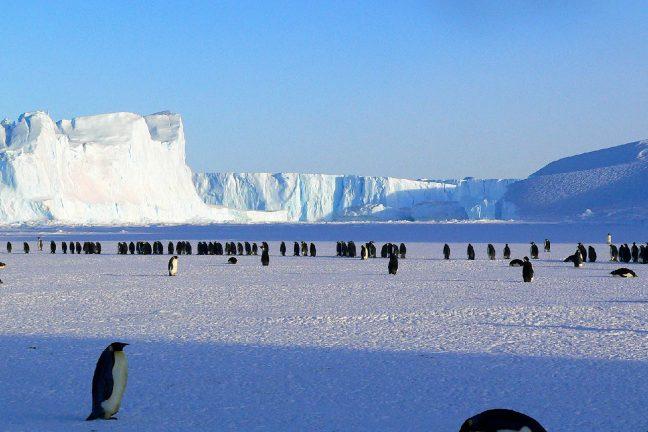 Antarctique : la banquise fond et les scientifiques ne savent pas pourquoi