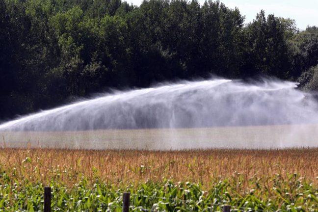 La France devrait s'attendre à une nouvelle vague de chaleur qui pourrait entraîner des sécheresses dans certaines régions