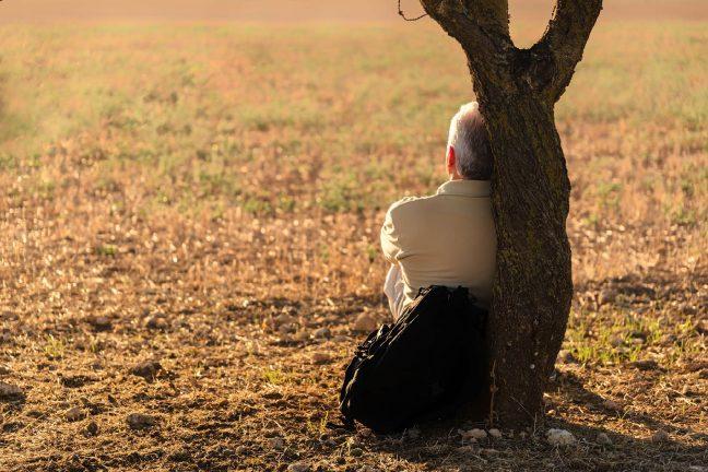 Météo-France craint un été particulièrement chaud et aride