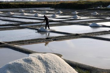 France : les producteurs de sel marin inquiets d'un futur label Bio européen