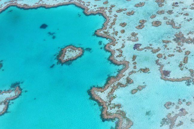 Un drone à la rescousse de la Grande Barrière de Corail