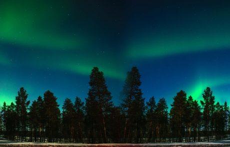 Un hôtel finlandais facture ses clients en fonction de leurs émissions de carbone
