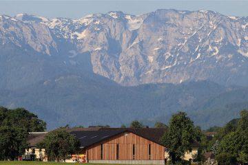 L'Autriche devient le premier pays de l'Union Européenne à bannir le glyphosate