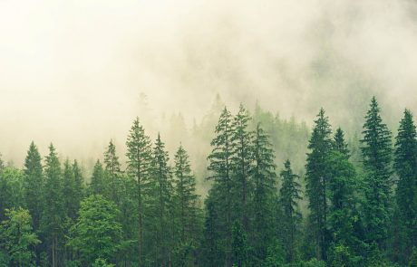 Où se joue la lutte contre le réchauffement climatique ?