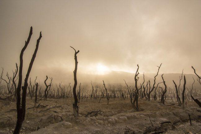 +7°C en 2100 : le réchauffement climatique a-t-il été sous-estimé ?