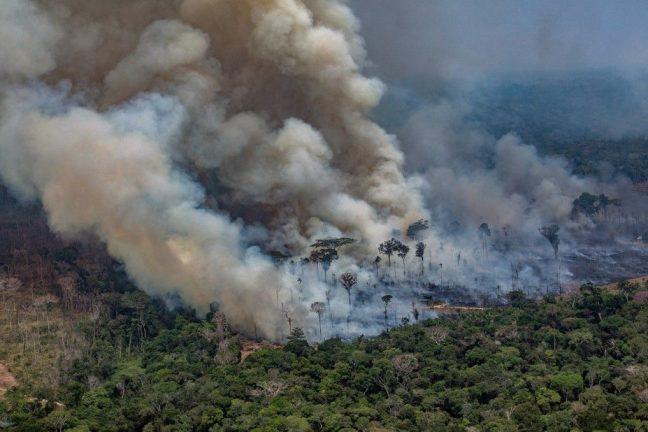 Le Brésil va embaucher plus d'agents environnementaux pour lutter contre les incendies de forêt