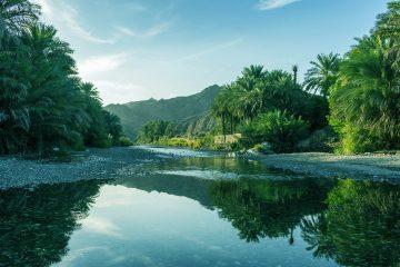 Les sacs en plastique à usage unique bannis du sultanat d'Oman à partir de 2021