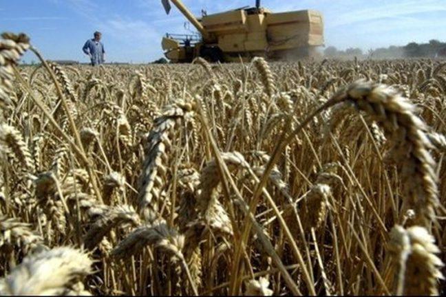 L'UE ne parvient pas à conclure un accord sur les subventions agricoles